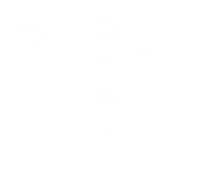 Tactical_fairy_white