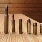Waffenführerscheinkurs Munition